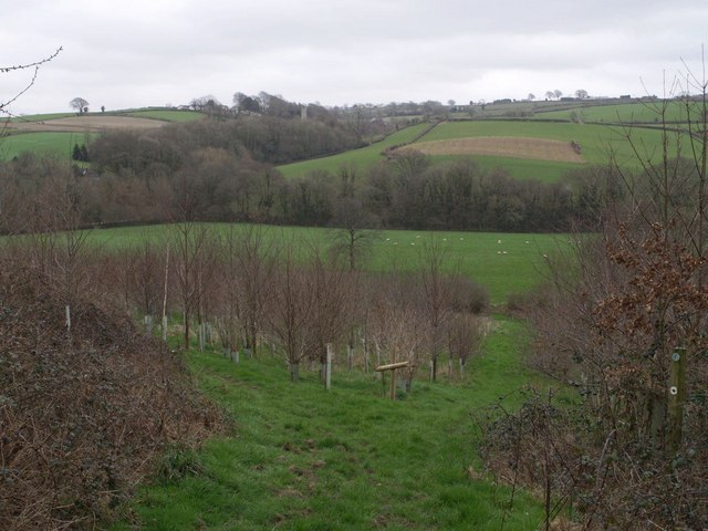Thrushel valley near Stowford
