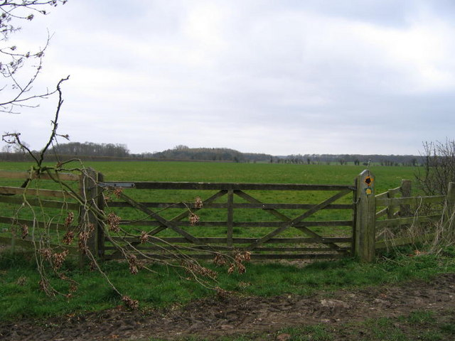 A Junction Of A Bridleway And Footpath