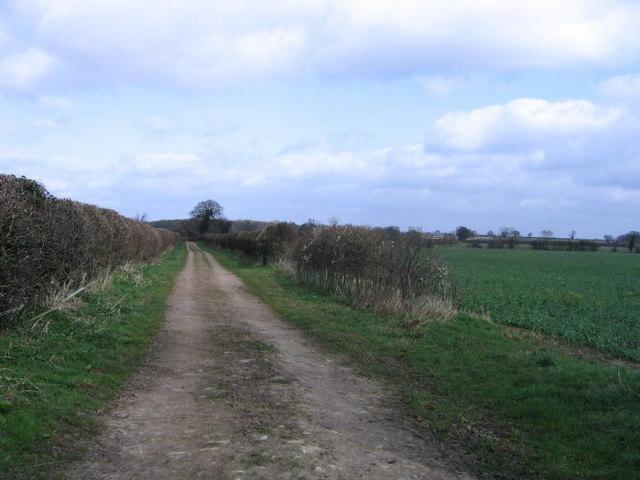 A Bridleway To Healaugh