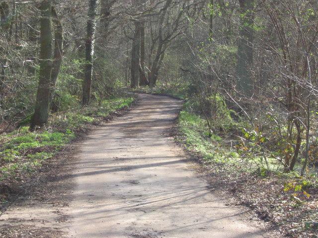 Track going East - corner of Cannocks/Newton Wood