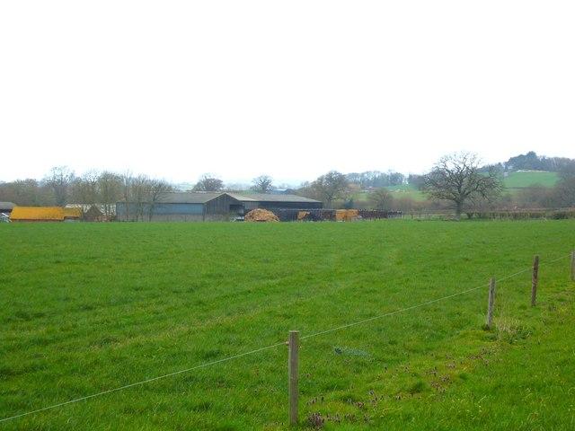 Pegg's Farm