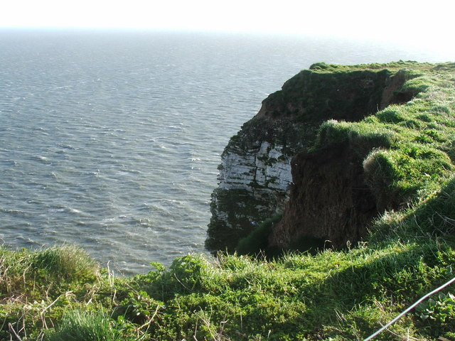 Scale Nab at Bempton Cliffs, nr Bridlington
