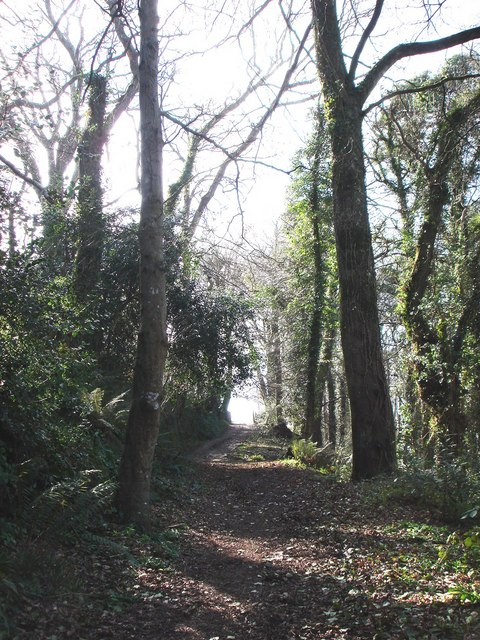 Woodland, Path to Greenway House