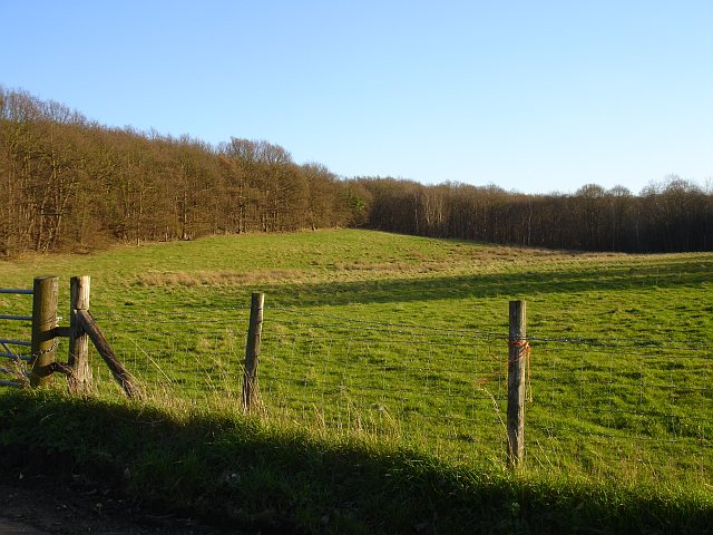 Eastern end of the Blean