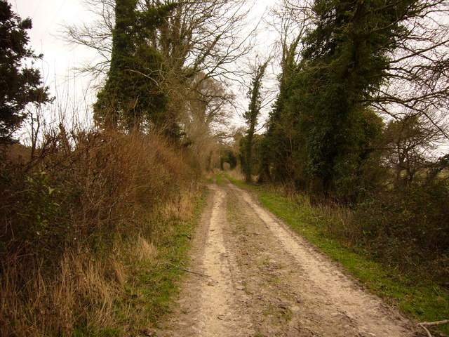 Smuggler's Lane