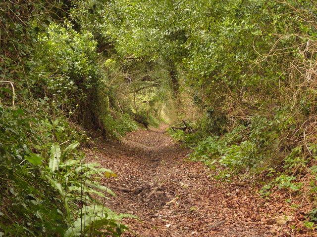 Down Smuggler's Lane