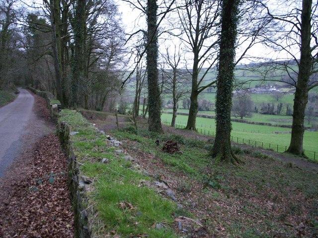 Lane through Barton Wood