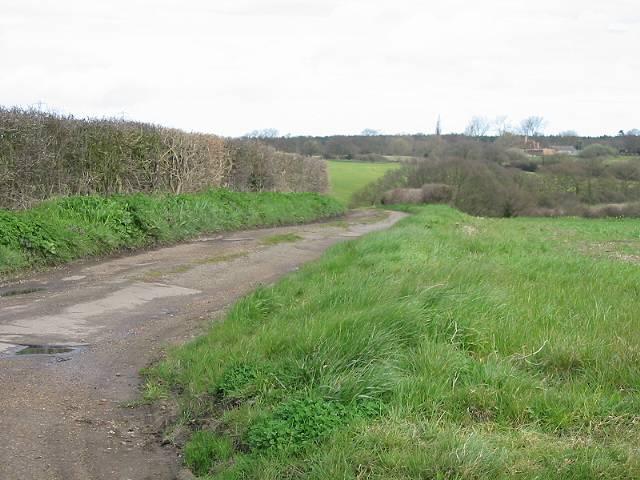 Lane leading from Mayton Lane to Greenacres