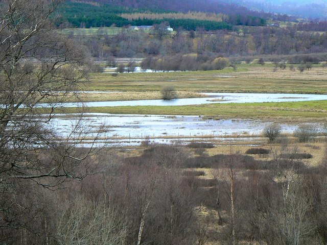 Insh marshes Nature Reserve