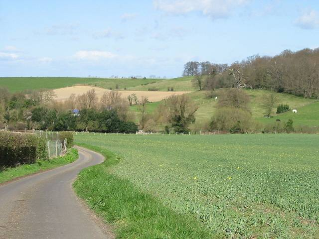 View across farmland towards Shelving Wood