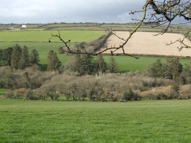 Helford River valley