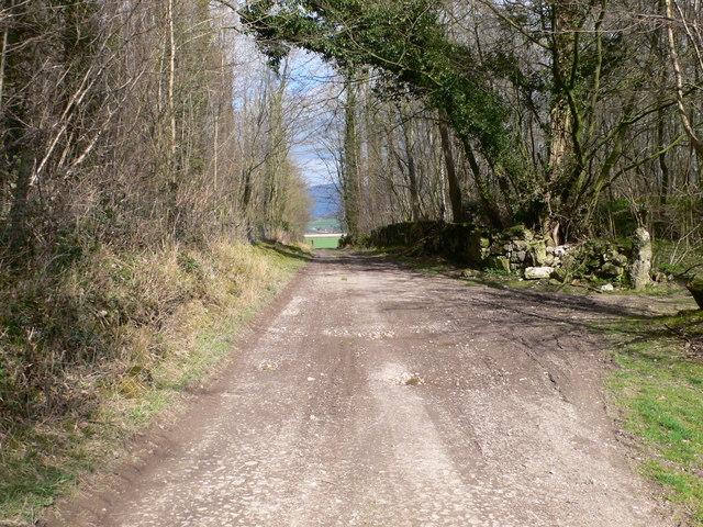 Bridleway near Graigadwywynt