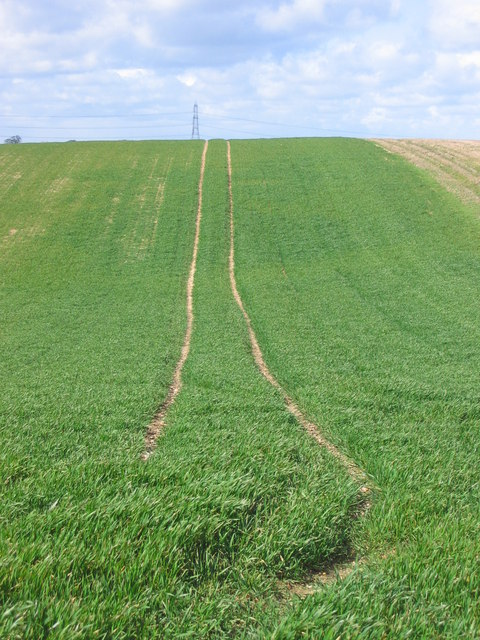 Farmers Tracks through field - North from Public Footpath 22