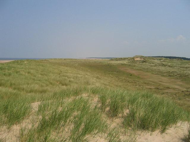 Dunes at Burnham Harbour