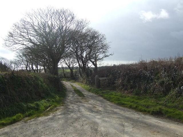 Lane to Crasken