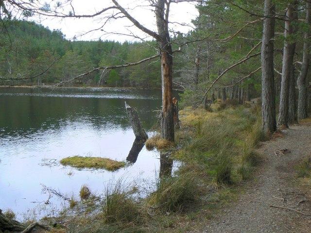 Lochan in Inshriach Forest