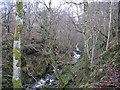 NM9347 : Glen Stockdale burn by John McLuckie