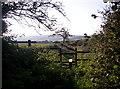 SX2397 : Footpath near Week Green by Oliver Bird