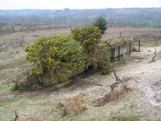 Disused rifle range butts on the northern side of Hampton Ridge, New Forest