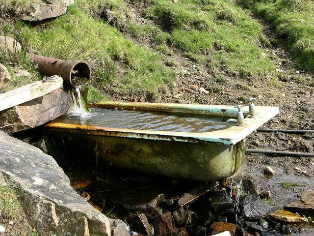 Bath Anyone?