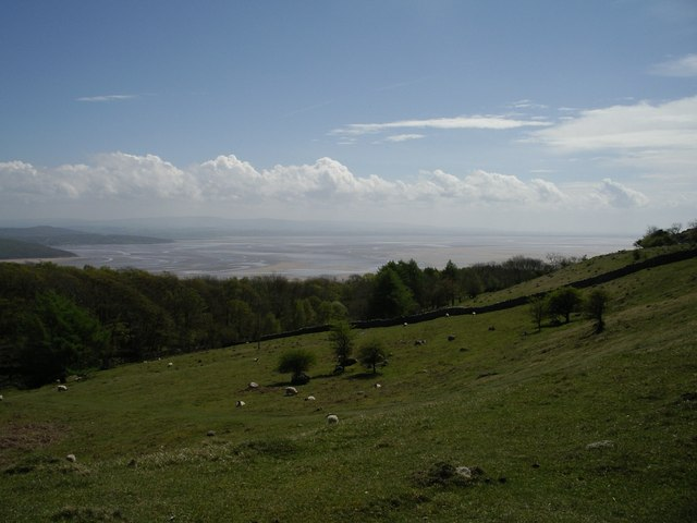 Morecambe Bay, from Hampsfell
