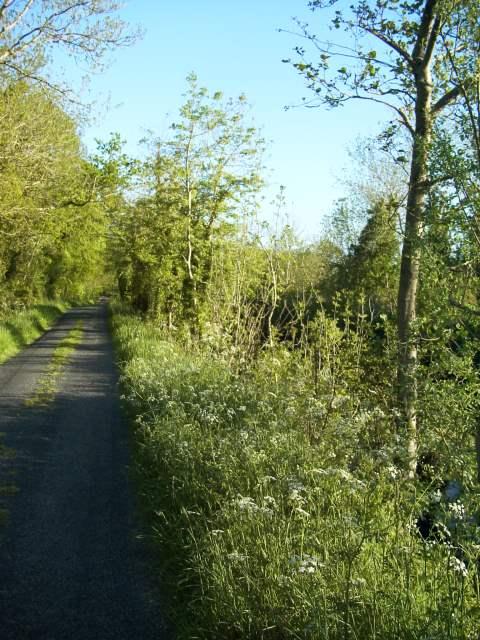 Riverside path along the Loch Allen Canal