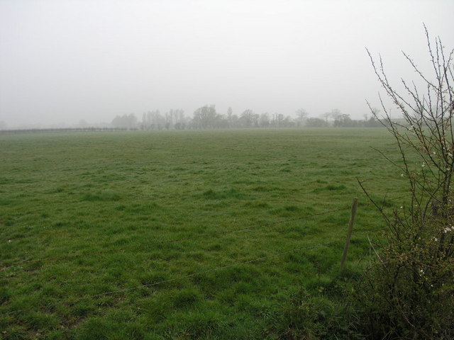 Footpath and Fog