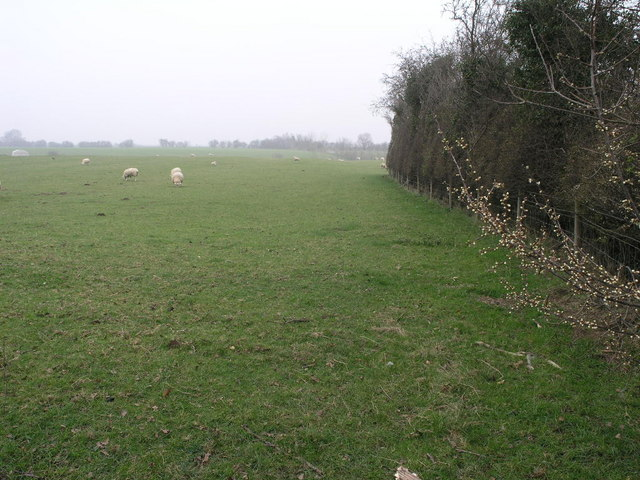 Footpath to Fox Farm