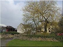 ST7486 : Haskin's Farm by Jonathan Billinger