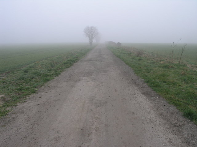 Misty Track to Farhill