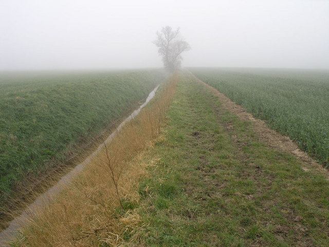 Drain and Bridleway
