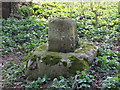 TM0192 : Close-up of Remains of Cross by Whitecross Drift by Ian Robertson