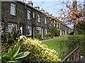 SE1932 : Dick Lane - Terraced Housing by Betty Longbottom