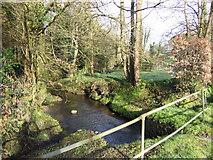 SW6923 : Riverside garden by Jonathan Billinger