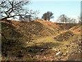 SK3196 : Bimshaw Quarry by John Fielding