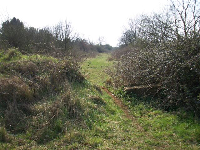 Footpath to Potton