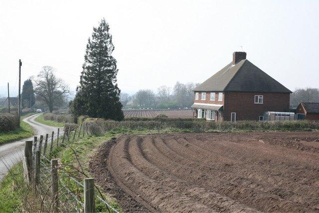 Potato Fields Near Hanyards
