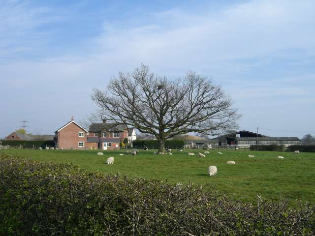 Clayhanger Hall Farm