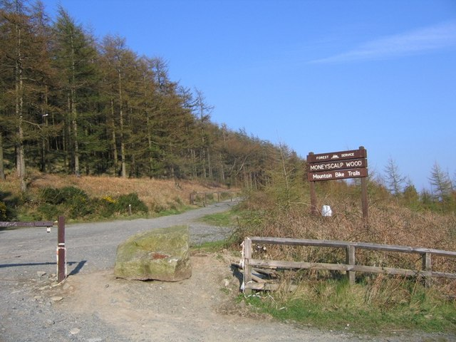 Entrance to Moneyscalp Wood