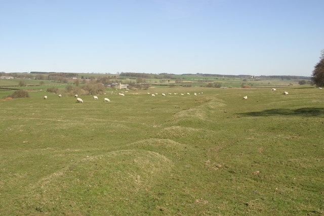 South Middleton deserted village
