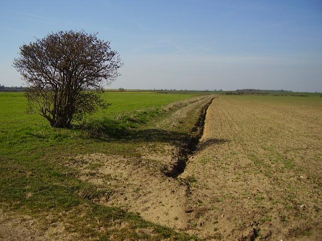 A field boundary
