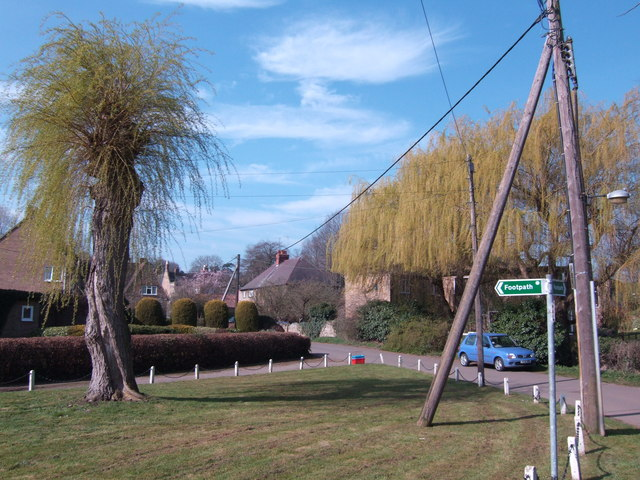 Willows in Boughton village