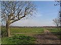 TL2283 : View towards Woodwalton Fen by Tim Heaton