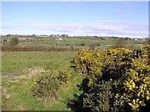 H2779 : Meencargagh Townland by Kenneth  Allen