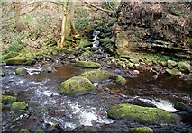 SE0024 : Cragg Brook, Spa Wood by Paul Glazzard