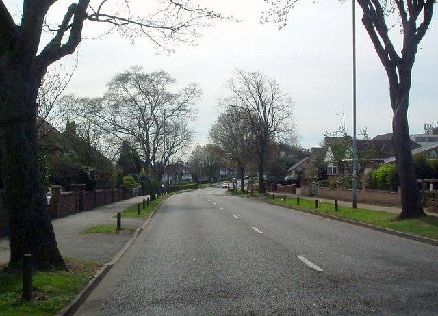 Windmill avenue
