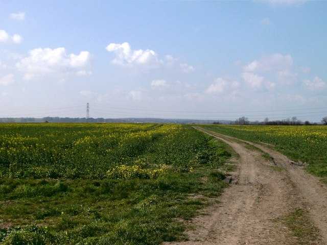 Bridlepath to the west