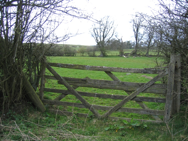 Field Gate And Field By The Old Oswestry 169 John S