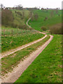 SE9063 : Bridleway To Towthorpe by Stephen Horncastle