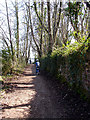 ST5575 : NCN 41 - Bristol to Pill cycle path by Linda Bailey